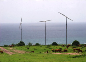 Wind Farm At Madden's Estate